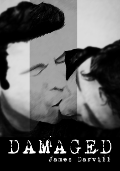 Damaged 2.0 Cover.png