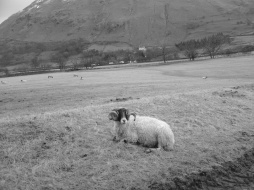 lake-district-15